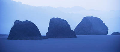 Cliffs On The Coast At Dawn, Meyers Art Print by Panoramic Images
