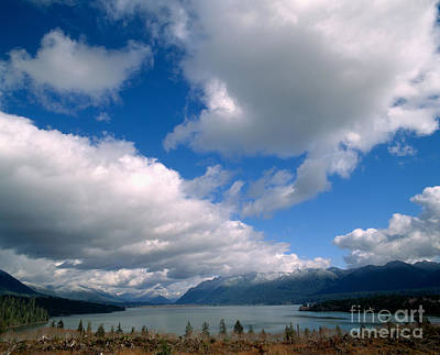 Photograph - Clouds Over Lake Quinault by Tracy Knauer