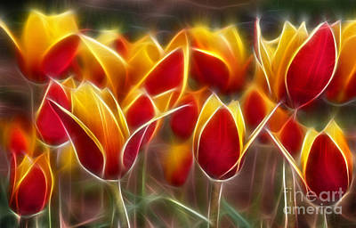 Digital Art - Cluisiana Tulips Fractal by Peter Piatt