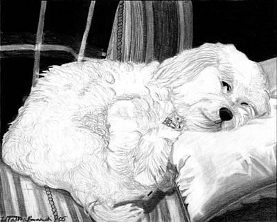 Cockapoo Dog Portrait   Art Print by Olde Time  Mercantile