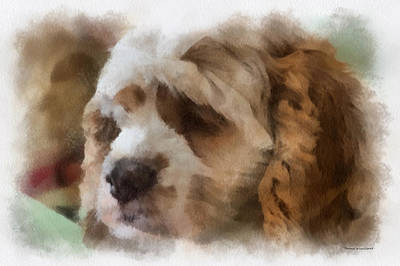 Woodcock Digital Art - Cocker Spaniel Photo Art 02 by Thomas Woolworth
