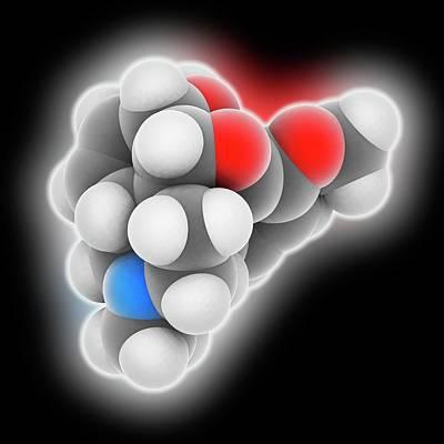 Reliefs Photograph - Codeine Drug Molecule by Laguna Design