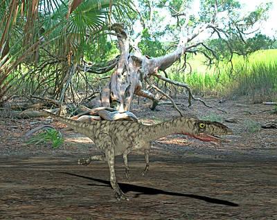 Paleozoology Photograph - Coelophysis Dinosaur by Friedrich Saurer