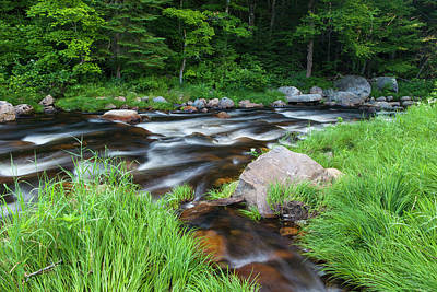 Cold Stream In Maine's Northern Forest Art Print by Jerry and Marcy Monkman
