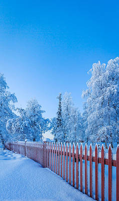 Cold Temperature Photograph - Cold Winter With Temperatures Going by Panoramic Images