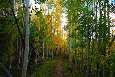 Colorado Mountains Photograph - Colorado Fall Hike by Michael J Bauer