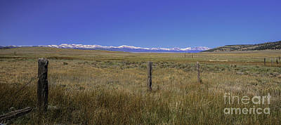 Photograph - Colorado Fence Line by David Waldrop
