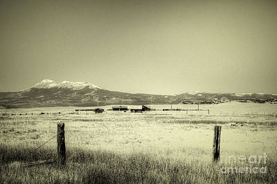 Photograph - Colorado Ranch by David Waldrop