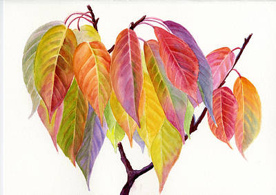 Red Leaves Painting - Colorful Fall Leaves by Sharon Freeman