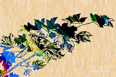 Leaf Mixed Media - Colorful Leaves by Marvin Blaine