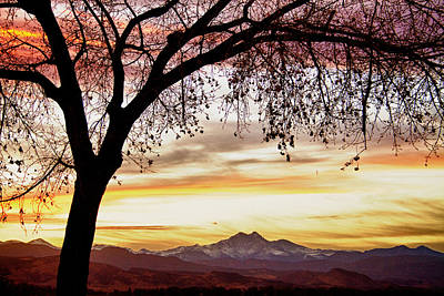Bo Insogna Photograph - Colorful November Sunset Sky And Longs Peak by James BO  Insogna