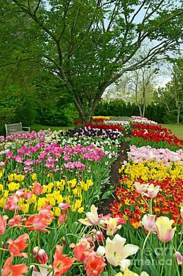 Digital Art - Colorful Tulips by Eva Kaufman