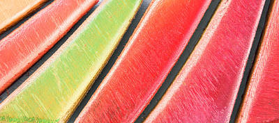 Wood Plank Flooring Photograph - Colorful Wood by Tom Gowanlock