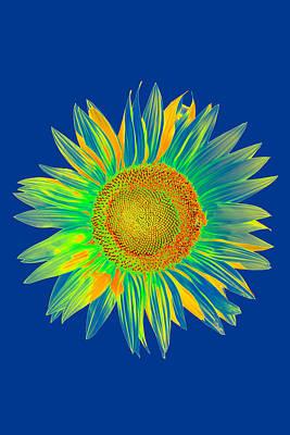 Stamen Digital Art - Colourful Sunflower by Roy Pedersen