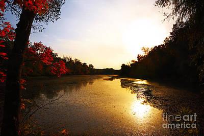 Photograph - Colours Of Autumn by Bernadett Pusztai