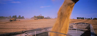 Combine Harvesting Soybeans In A Field Art Print by Panoramic Images