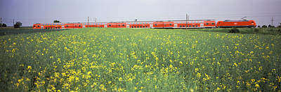 Commuters Photograph - Commuter Train Passing Through Oilseed by Panoramic Images