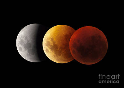 Composite Image Of Lunar Eclipse Print by Philip Hart