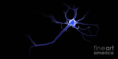 Conceptual Image Of A Neuron Art Print