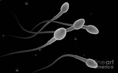 Conceptual Image Of Male Sperm Art Print by Stocktrek Images