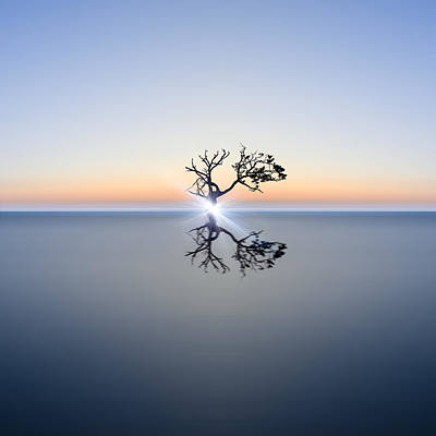 Water Filter Photograph - Conceptual Image Of Single Tree In Still Water With Sunburst by Matthew Gibson