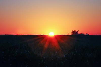 Cornfield Photograph - Cornfield Sunrise by Bill Cannon