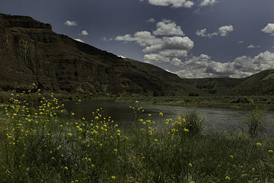 Photograph - Cottonwood Canyon State Park by Jean-Jacques Thebault
