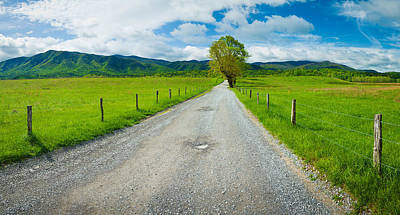 Dirt Roads Photograph - Country Gravel Road Passing by Panoramic Images