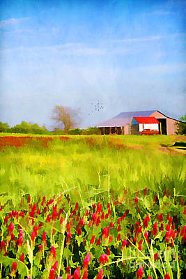 Country Kind Of Spring Art Print by Darren Fisher
