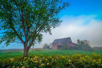 Country Morning Art Print by Brian Stevens