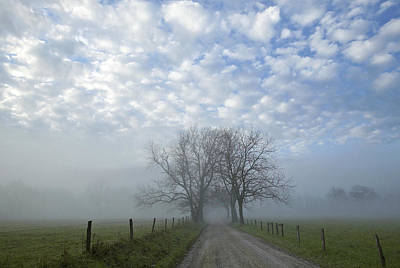 Photograph - Country Road by Byron Jorjorian