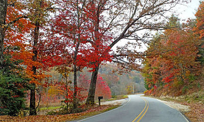 Photograph - Country Road In The Fall by Duane McCullough
