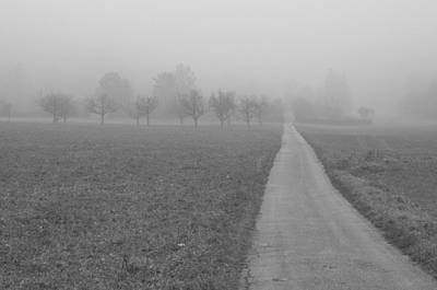 Photograph - Country Road by Miguel Winterpacht