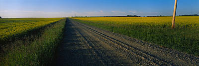 Vanishing America Photograph - Country Road Passing Through A Field by Panoramic Images