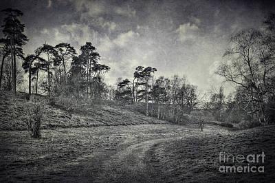 White River Scene Digital Art - Country Road by Svetlana Sewell