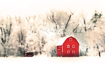 Photograph - Country Winter by Gina Signore