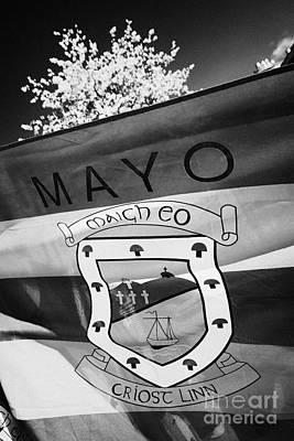County Mayo Gaa County Flag Republic Of Ireland Art Print by Joe Fox