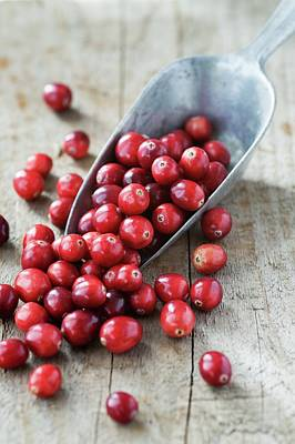 Cranberries Art Print by Gustoimages