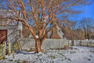 Photograph - Crepe Myrtle Williamsburg Garden Winter by Jerry Gammon