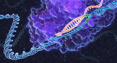 Crispr Genome Editing, Illustration Art Print