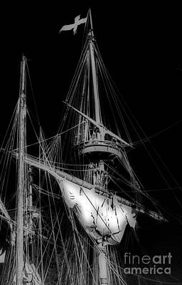 Crows Nest Art Print by Skip Willits
