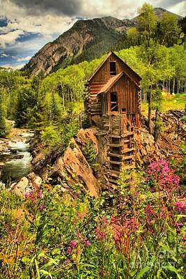 Crystal Mill Wildflowers Art Print by Adam Jewell