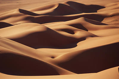 Sahara Photograph - Curves by Ivan Slosar
