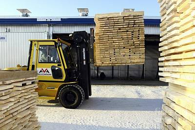 Lift Truck Photograph - Cut Timber Being Stacked For Drying by RIA Novosti