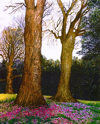 Cyclamen Painting - Cyclamens At Killerton by Emma Childs