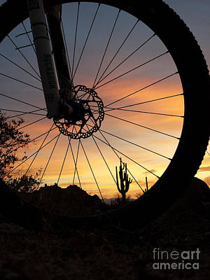 Photograph - Cycling At Sunrise by Marianne Jensen