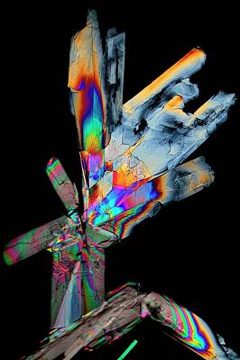Essential Photograph - Cysteine Crystals by Antonio Romero