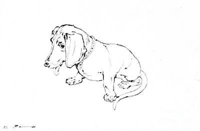 Dachshund Art Drawing - Dachshund by Kurt Tessmann