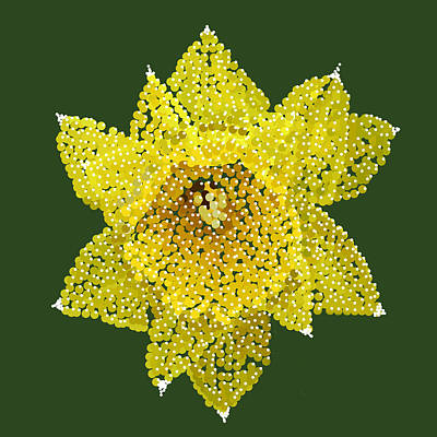 Digital Art - Daffodil Bedazzled by R  Allen Swezey