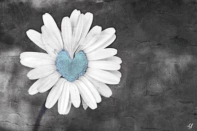 Wild Flower Heart Photograph - Daisy Blue by Linda Sannuti